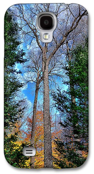Surreal Landscape Galaxy S4 Cases - The Last Bit of Autumn Galaxy S4 Case by David Patterson