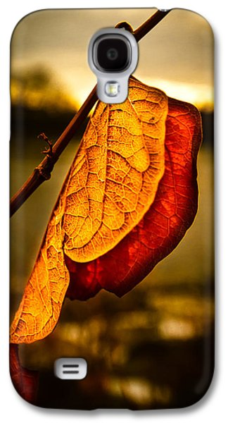 Dreamscape Galaxy S4 Cases - The Leaf Across The River Galaxy S4 Case by Bob Orsillo