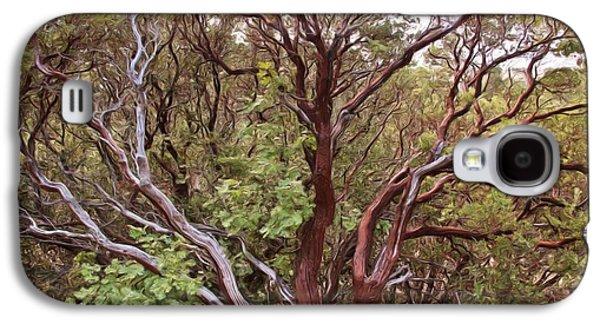 Lone Tree Galaxy S4 Cases - The Manzanita Tree Galaxy S4 Case by Heidi Smith