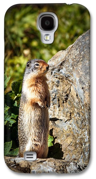 The Marmot Galaxy S4 Case by Robert Bales