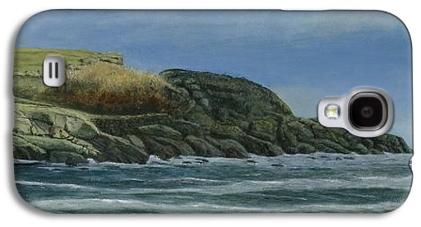 Nubble Lighthouse Paintings Galaxy S4 Cases - The Nubble Galaxy S4 Case by Nan McCarthy