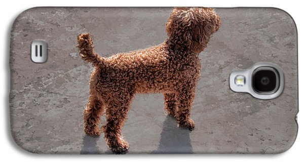 Puppies Digital Art Galaxy S4 Cases - The Patient Poodle Galaxy S4 Case by Wendy Lubetkin