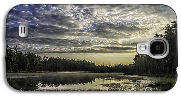 Pine Barrens Galaxy S4 Cases - The Pines Galaxy S4 Case by Louis Dallara