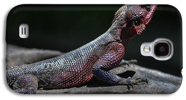 Fantasy Photographs Galaxy S4 Cases - The Rainbow Agama Lizard Galaxy S4 Case by Gary Keesler