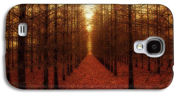 Outdoors Galaxy S4 Cases - The Red Forest Galaxy S4 Case by Amy Tyler