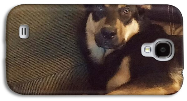 Guard Dog Galaxy S4 Cases - The Regal Alsatian Galaxy S4 Case by I F Abbie Shores