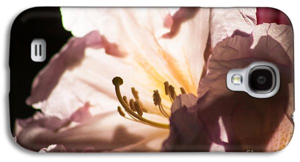 The Rhododendron Forest B Galaxy S4 Case by Jennifer Apffel