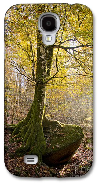 Tree Roots Photographs Galaxy S4 Cases - The Rock Tree Galaxy S4 Case by Sophie De Roumanie