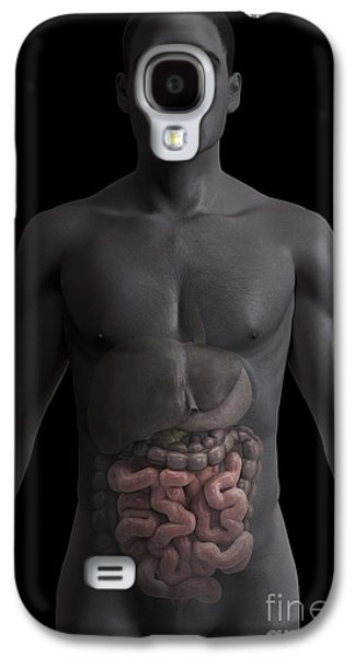 Internal Organs Galaxy S4 Cases - The Small Intestines Galaxy S4 Case by Science Picture Co