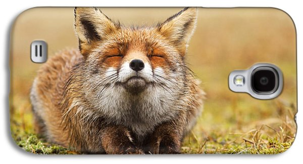 Red Fox Galaxy S4 Cases - The Smiling Fox Galaxy S4 Case by Roeselien Raimond