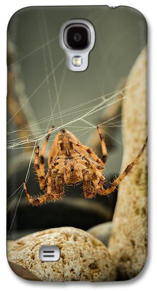 Creepy Galaxy S4 Cases - The Spectacular Spider I Galaxy S4 Case by Marco Oliveira