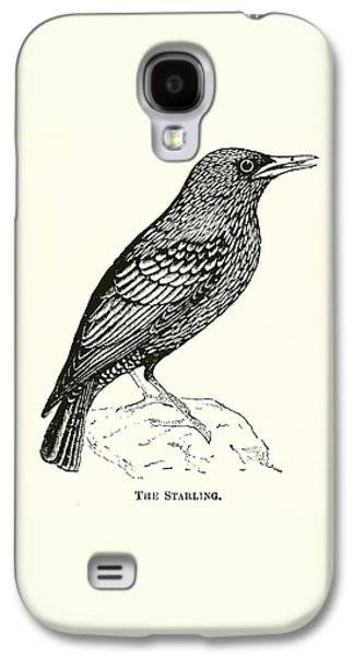 The Starling Galaxy S4 Case by English School