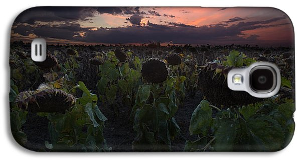 Sunflower Field Galaxy S4 Cases - The Time Has Come Galaxy S4 Case by Aaron J Groen