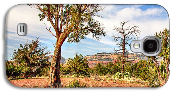Mystical Landscape Mixed Media Galaxy S4 Cases - The Tree Sedona Secret Mountain Wilderness Galaxy S4 Case by  Bob and Nadine Johnston