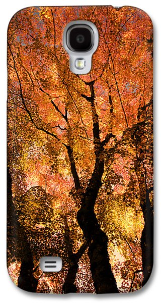 The Trees Dance As The Sun Smiles Galaxy S4 Case by Don Schwartz