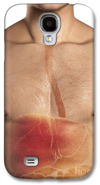 Internal Organs Galaxy S4 Cases - The Upper Digestive System Galaxy S4 Case by Science Picture Co