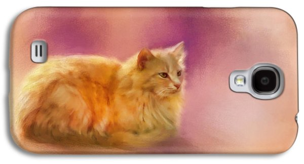 Orange Pastels Galaxy S4 Cases - The Warmth of a Perfect Day Galaxy S4 Case by Jai Johnson