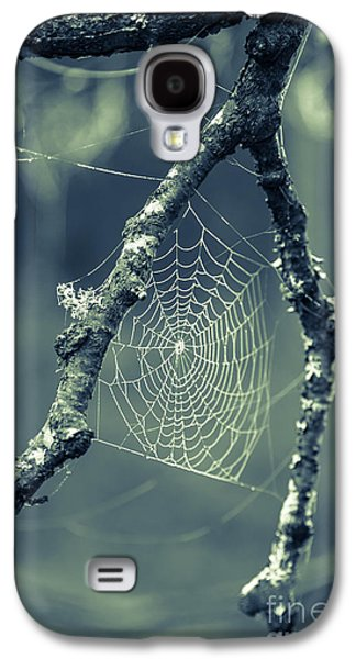 Photography Prints Galaxy S4 Cases - The Webs We Weave Galaxy S4 Case by Edward Fielding