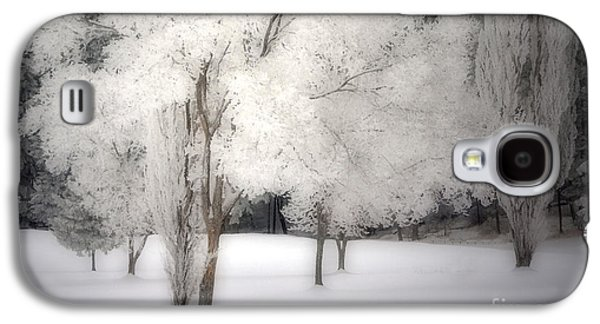 Snow-covered Landscape Digital Art Galaxy S4 Cases - The White Dreams of Winter Galaxy S4 Case by Tara Turner