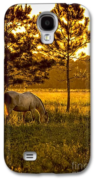 Country Dirt Roads Galaxy S4 Cases - This Old Friend Galaxy S4 Case by Marvin Spates