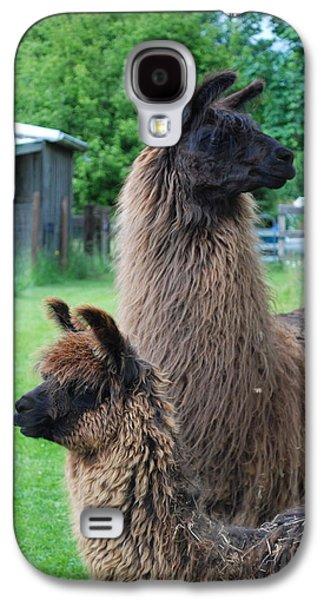 Llama Digital Galaxy S4 Cases - This Way or That Galaxy S4 Case by Kathy Sampson