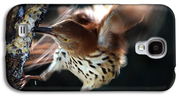 Photos Of Birds Galaxy S4 Cases - Thrashing Thrasher Galaxy S4 Case by Skip Willits