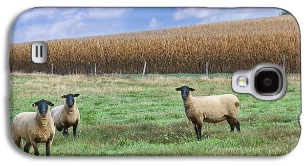 Pasture Scenes Photographs Galaxy S4 Cases - Three Bags Full Galaxy S4 Case by Nikolyn McDonald