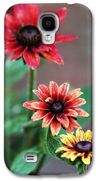 Old Montreal Galaxy S4 Cases - Three Flowers Galaxy S4 Case by John Rizzuto