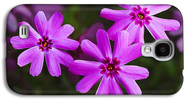 Botanical Galaxy S4 Cases - Three in the Pink Galaxy S4 Case by Bill Caldwell -        ABeautifulSky Photography