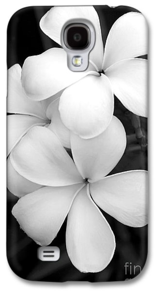 Blooms Galaxy S4 Cases - Three Plumeria Flowers in Black and White Galaxy S4 Case by Sabrina L Ryan