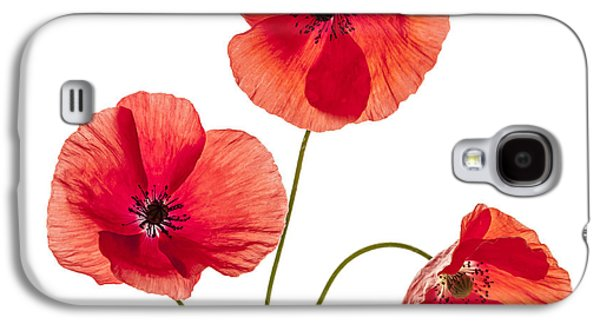 Cutouts Galaxy S4 Cases - Three red poppies Galaxy S4 Case by Elena Elisseeva