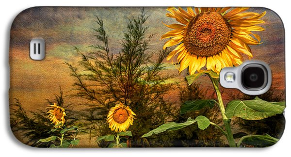 Stamen Digital Galaxy S4 Cases - Three Sunflowers Galaxy S4 Case by Adrian Evans