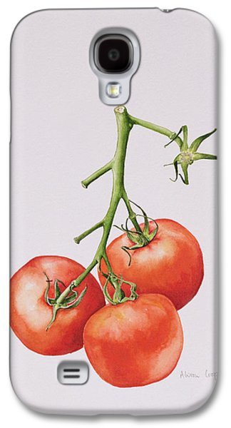 Watercolor Drawings Galaxy S4 Cases - Three Tomatoes on the Vine Galaxy S4 Case by Alison Cooper
