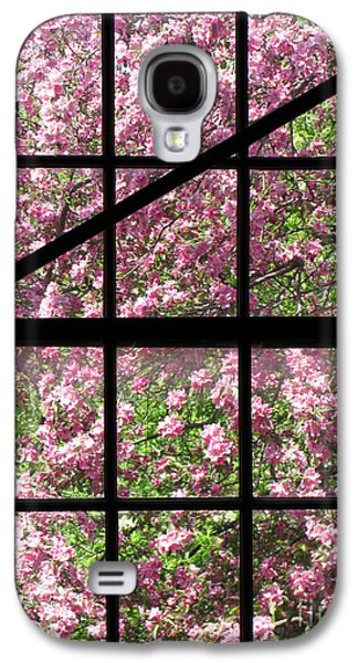 Cherry Tree Galaxy S4 Cases - Through an Old Window Galaxy S4 Case by Olivier Le Queinec