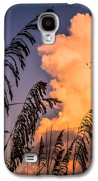 Beach Photographs Galaxy S4 Cases - Through the grass Galaxy S4 Case by Zina Stromberg