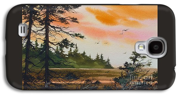 Landscape Acrylic Prints Paintings Galaxy S4 Cases - Tideland Dawn Galaxy S4 Case by James Williamson