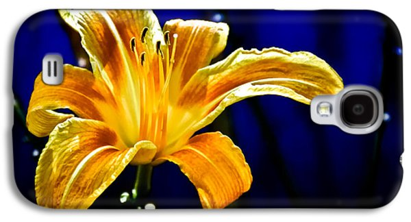 Thoughtful Photographs Galaxy S4 Cases - Tiger Lily on Waters Edge Galaxy S4 Case by Bob Orsillo