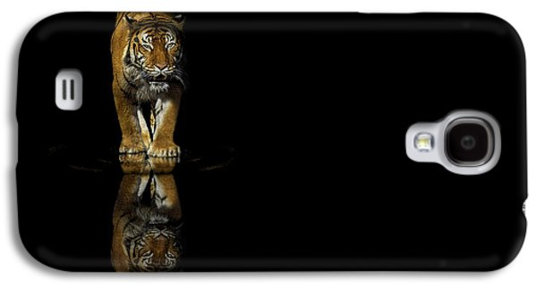 The Tiger Hunt Galaxy S4 Cases - Tiger Reflections - Big Cat - Predator Galaxy S4 Case by Jason Politte