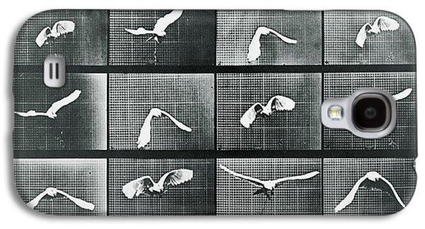 Nature Study Mixed Media Galaxy S4 Cases - Time Lapse Motion Study Bird Monochrome  Galaxy S4 Case by Tony Rubino