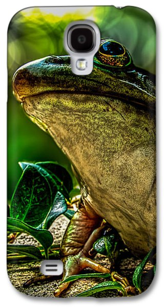 Surreal Landscape Galaxy S4 Cases - Time Spent With The Frog Galaxy S4 Case by Bob Orsillo