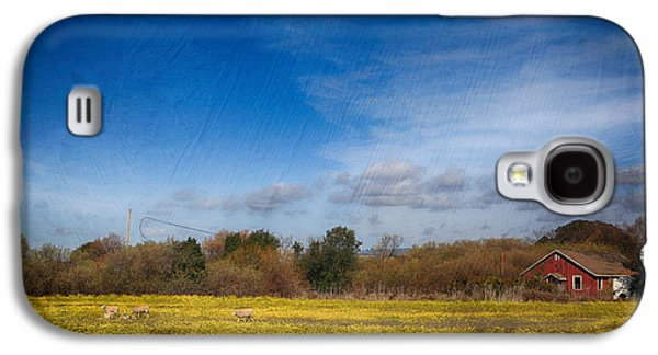 Sheep Digital Art Galaxy S4 Cases - Times Like These Galaxy S4 Case by Laurie Search