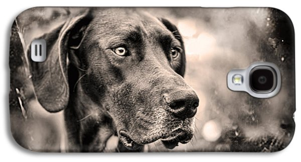 Dogs Digital Galaxy S4 Cases - Wilma in Tintype Galaxy S4 Case by Chaya Emily Baumbach