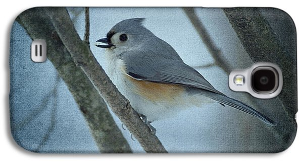Tufted Titmouse Galaxy S4 Cases - Titmouse Galaxy S4 Case by Sandy Keeton