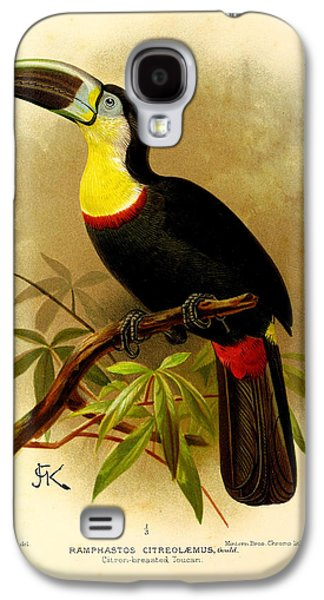 Ornithology Paintings Galaxy S4 Cases - Toucan Galaxy S4 Case by J G Keulemans