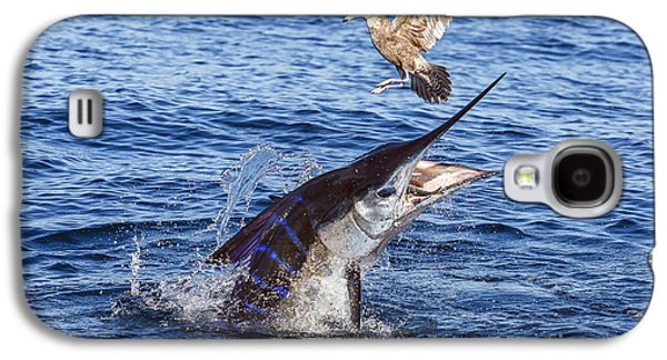 Striped Marlin Galaxy S4 Cases - Touche Galaxy S4 Case by Scott Kerrigan