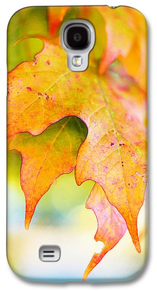 Samhain Paintings Galaxy S4 Cases - Touched Galaxy S4 Case by Lorelei Bleil