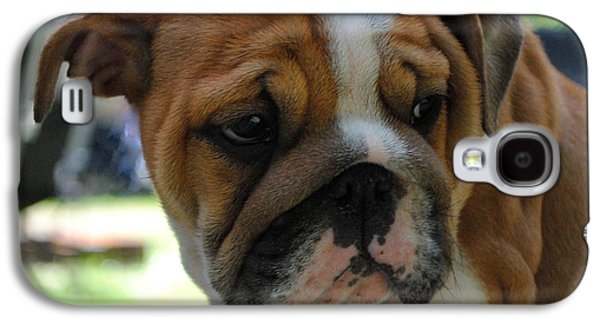 Dogs Pyrography Galaxy S4 Cases - Tough Being a bulldog Galaxy S4 Case by Ronald Nunes