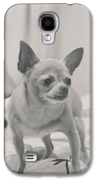 Doggy Galaxy S4 Cases - Tough Girl Galaxy S4 Case by Laurie Search