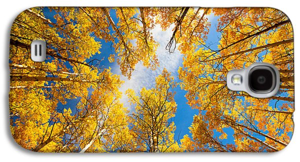 Landscape Metal Prints Galaxy S4 Cases - Towering Aspens Galaxy S4 Case by Darren  White
