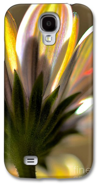 Nature Abstracts Galaxy S4 Cases - Transparency Galaxy S4 Case by Deb Halloran
